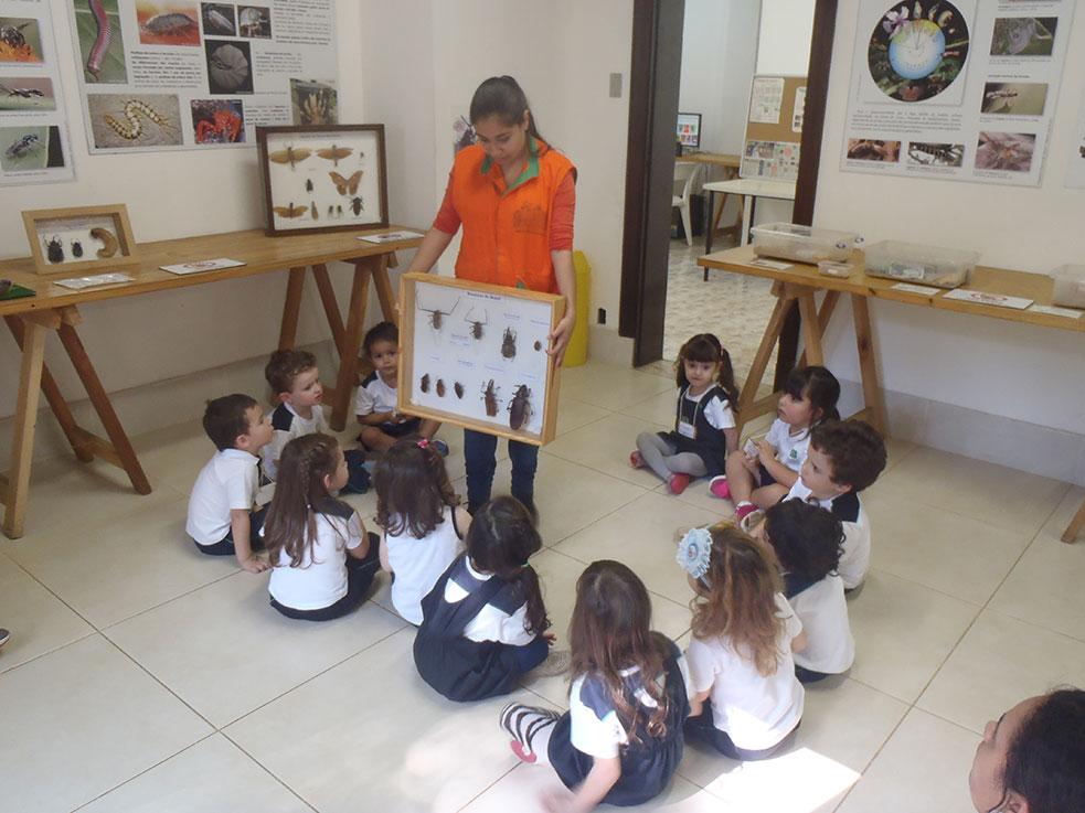 saida-pedagogica-4